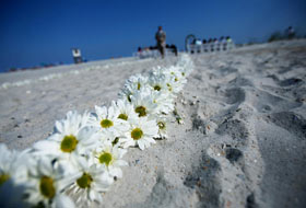 Wrightsville Beach Weddings Shell Island Resort