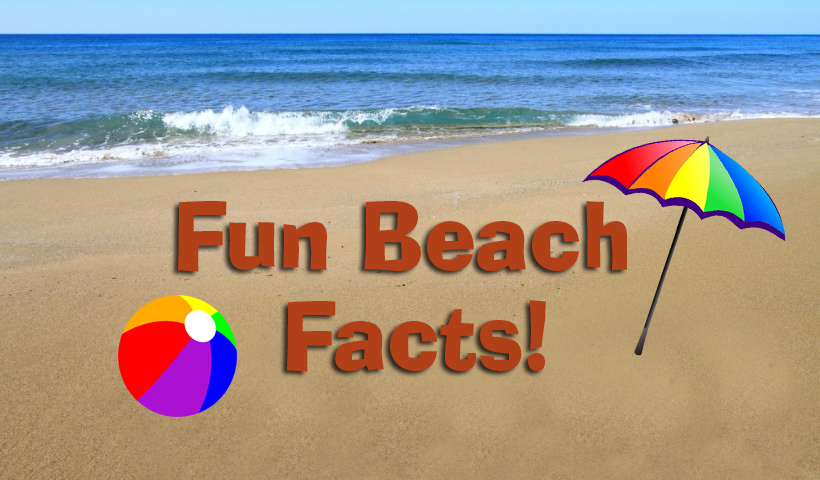 Fun Beach Facts